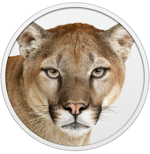 Mountain lion hero 2