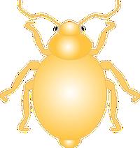 Bug 111 1 22